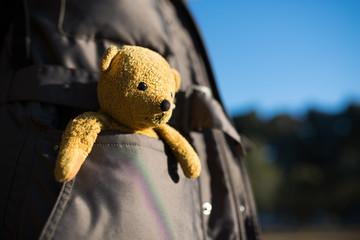 ポケットに入った熊の縫い包み