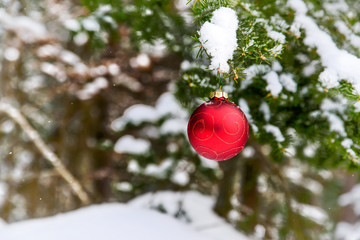 Christmas Bauble on a Snowy Tree