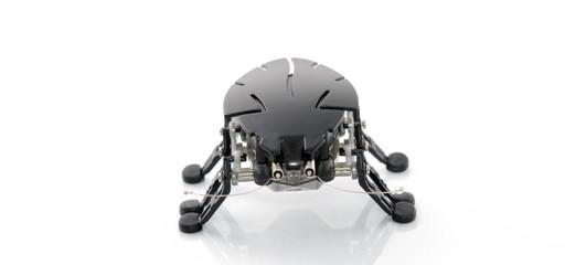 Blatte robotique