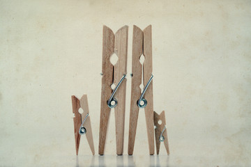 Abstract: The family of linen clothespins