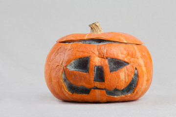 Mouldy Halloween Pumpkin. isolated