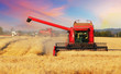 Leinwanddruck Bild - Wheat field with harvester