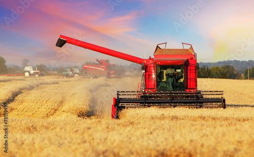 Leinwanddruck Bild Wheat field with harvester
