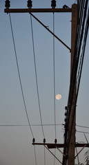 moon between the wire on the morning
