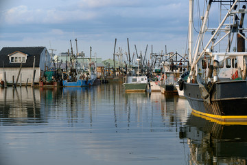 Docked ocean going fishing trawlers at dusk