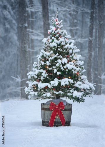 Snowy Christmas Tree with Colorful Lights in a Forest - 78161006