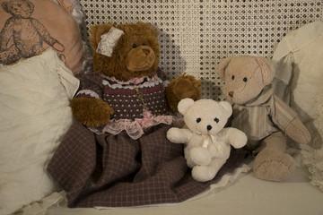 Teddy bear's family