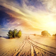 Road in the hot desert sand