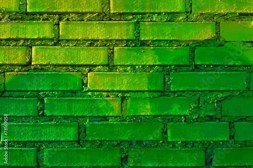 canvas print picture Mauer mit gruenen Ziegeln
