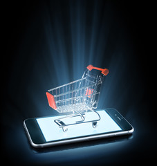 shopping on line with smartphone