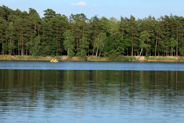 Brzeg jeziora, las.
