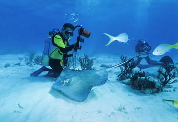 Cayman Islands, diver and a stingray - FILM SCAN
