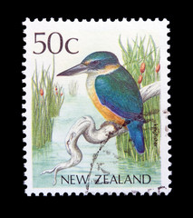 New Zeland Stamp with the picture of a kingfisher bird