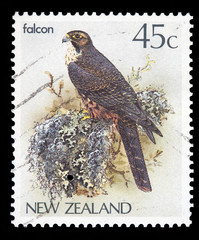 45 cent New Zeland postal stamp with a falcon picture
