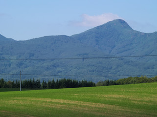 高原の畑作地帯