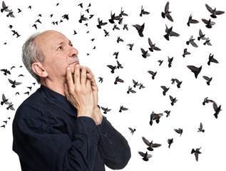 Elderly man looking up on flying birds