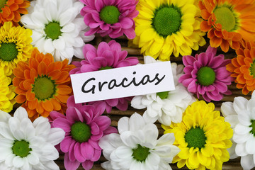 Gracias (thank you in Spanish) card with Santini flowers