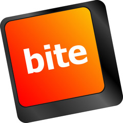 bite enter button on computer pc keyboard key