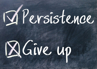persistence or give up choice