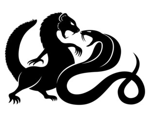Mongoose and cobra.