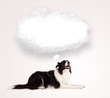 canvas print picture - Cute dog with empty cloud bubble