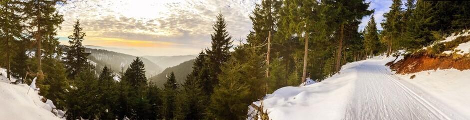 Panorama Thüringer Wald im Winter