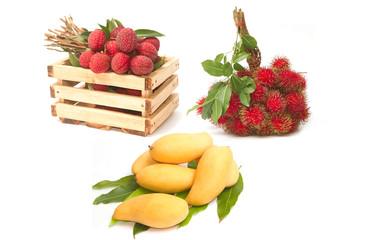 Set of asian fruit ,mango , rambutans and lychees