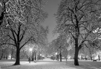 Winter snow park