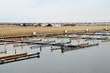 canvas print picture - Yachthafen am Neusiedler See im Winter