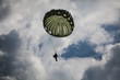 Parachutist in the war - 78214027
