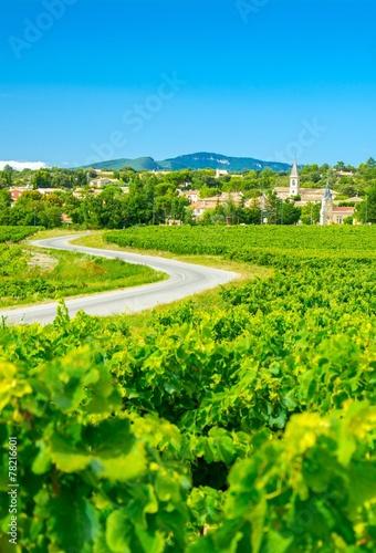 Vignes et village en Provence, France - 78216601