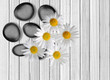 Black spa stones and camomiles on white wooden background
