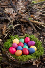 Colored eggs in a basket
