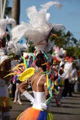 Carnaval Pointe à Pitre