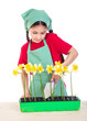 Girl planting daffodils on the desk