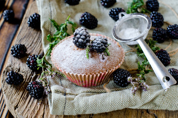 Muffins with blackberry