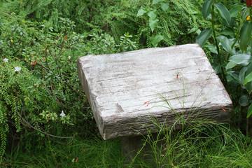 blank pedestal cement stone in green garden