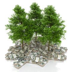 Big pile of money. dollars and tree. finance