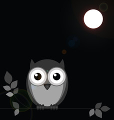 Monochrome owl bathed in moonlight