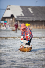Farmer working in the salt field in Thailand