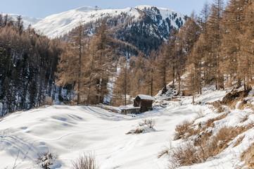Zermatt, Bergdorf, Alpen, Alphütte, Stall, Wallis, Schweiz
