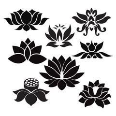 Lotus flowers  Tattoo - Illustration on white background