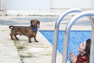 Dachshund dog with woman