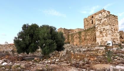 Byblos Crusader Fortress
