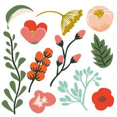 Floral and leaf element. Vector and Illustration design.