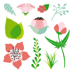 Floral and leaf element in bright colors. Vector design.