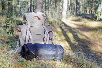 hiking - backpack with camping equipment in woods