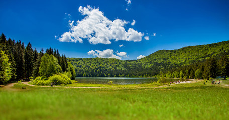 Lake near the mountain with pine forest