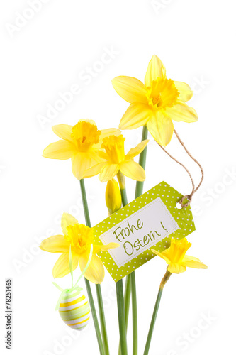 In de dag Narcis Osterglocken - Freisteller mit Text Frohe Ostern