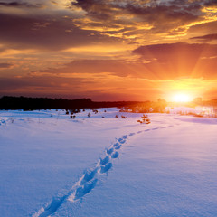 Patway on snow to sunset